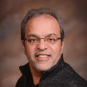 Mahmoud Sadri, Ph.D.